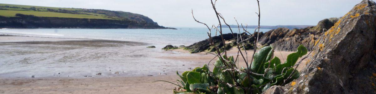 Photo of Seaside B&Bs